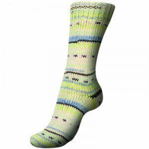 Regia - 8-ply Snow Color Sock Yarn