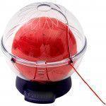 Prym Yarn Globe - Yarnit